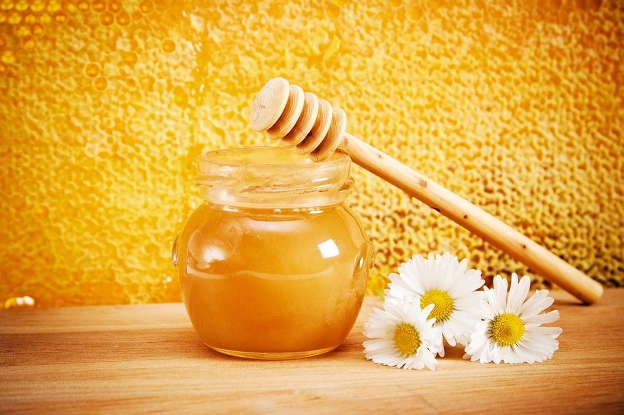 صورة فوائد غذاء ملكات النحل , الفوائد الغذائية لعسل النحل