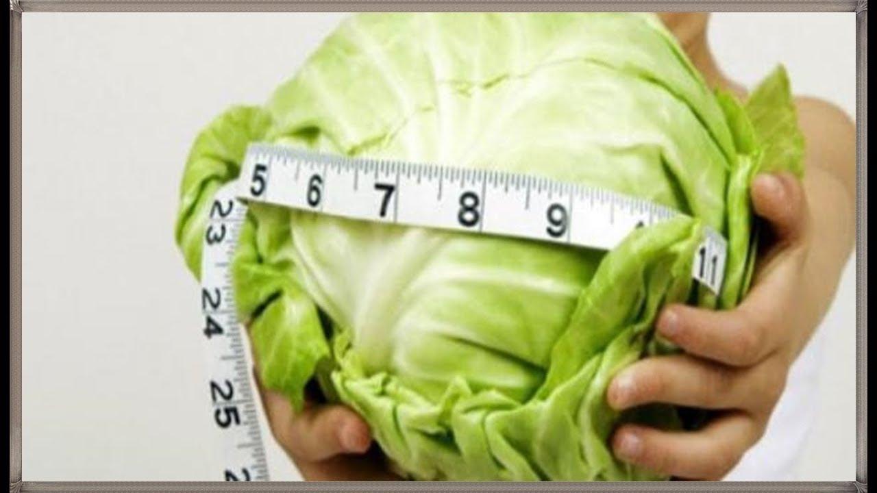 صورة فوائد الملفوف , الملفوف وانقاص الوزن