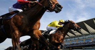 صورة اجمل خيول في العالم , اجمل سباق للخيول