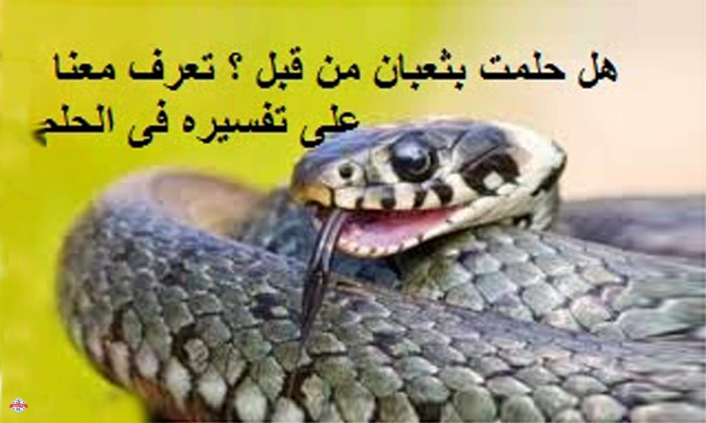 الثعابين في المنام , تفسير رؤية الثعبان ف الحلم