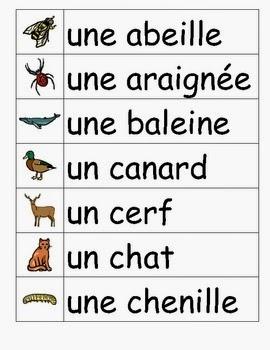 صورة كلمات فرنسيه , كلام باللغة الفرنسية