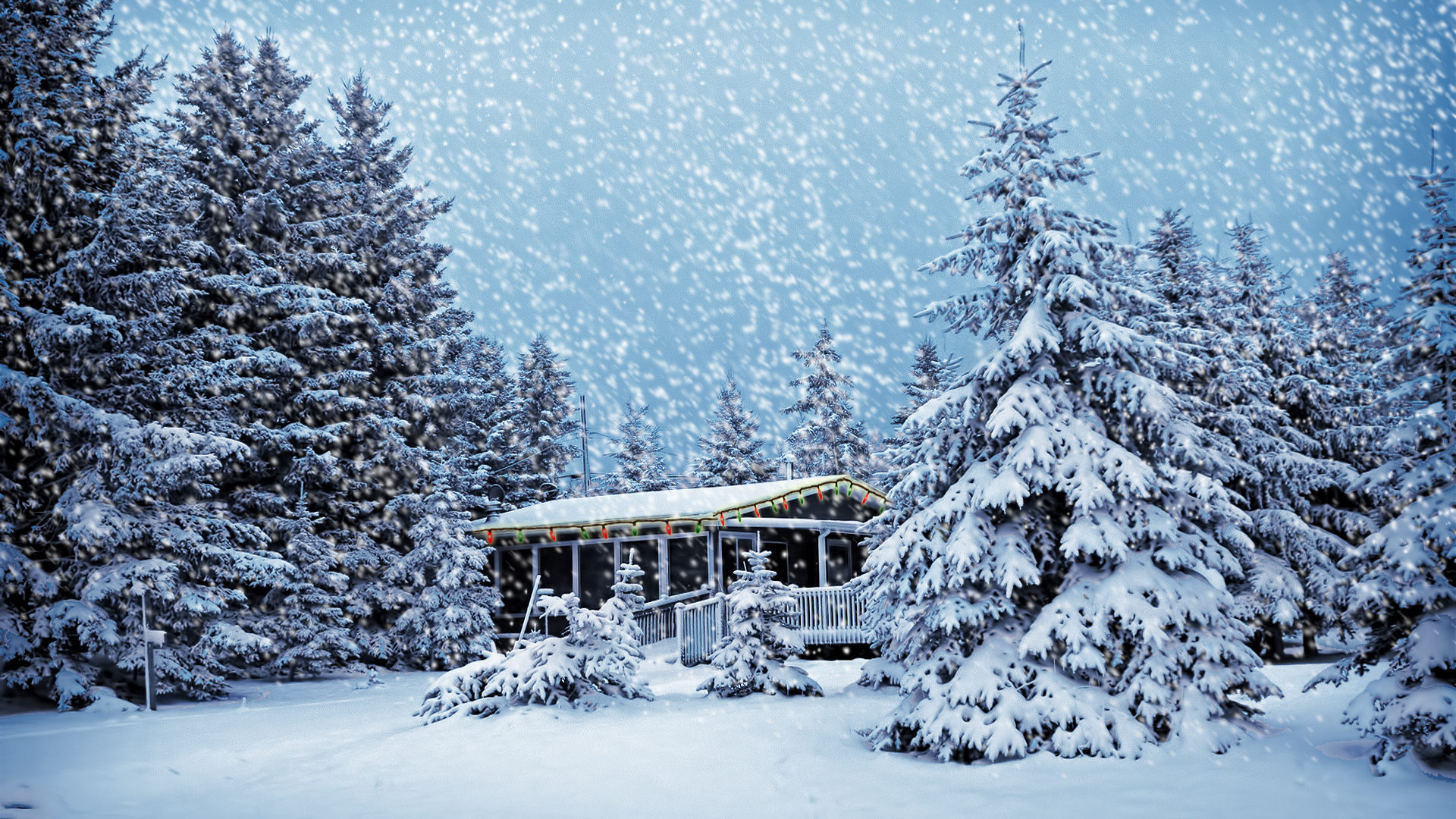 صورة صور عن البرد , صور عن برد الشتاء