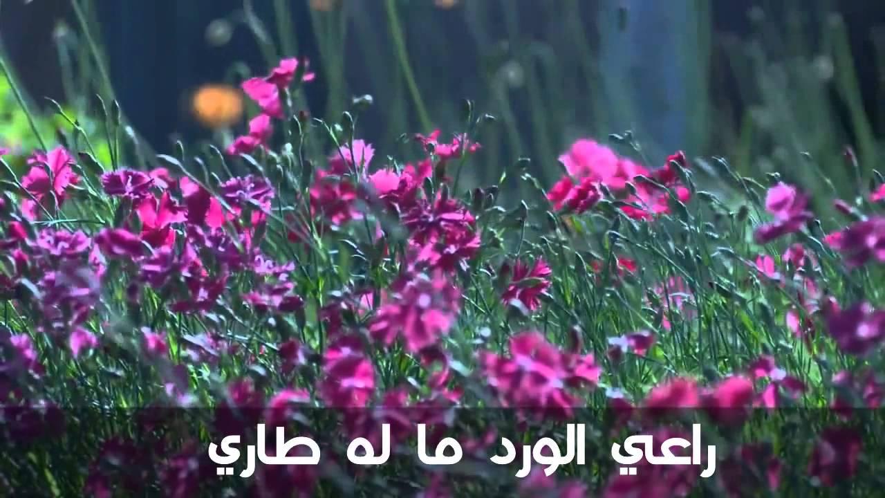 صورة حكم عن الورد , كلام موزون عن الورود