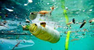 بالصور اسباب تلوث البيئة , احذر ان تكون تفعل واحدا منهم 379 2 310x165