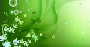 صور خلفية خضراء , صور رائعة بالوان خضراء