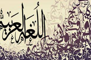 صورة معلومات عن اللغه العربيه , قالوا عن لغة الضاد