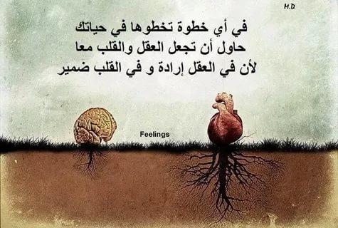 صورة كلام جميل من القلب , اجمل الكلمات المؤثرة من القلب