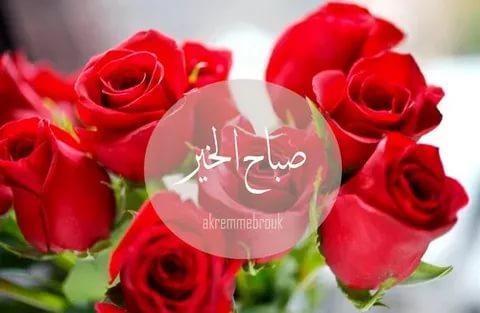 صورة ورد صباح الخير , كلمات صباحية محملة برائحة الورد