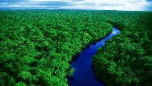 صورة اجمل المناظر الطبيعية , لوحات جميلة ومتقنة لمنظر طبيعى خلاب