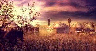 صورة رواية مزرعة الدموع , تنزيل روايات اجتماعية