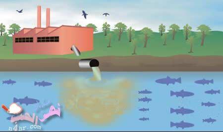 صورة اسباب تلوث الماء , معرفة ملوثات الماء