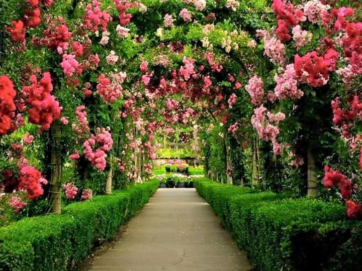 صور صور مناظر جميلة , اجمل مناظر طبيعية