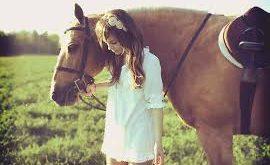 صورة صور خيول , الخيل وجماله فى صور