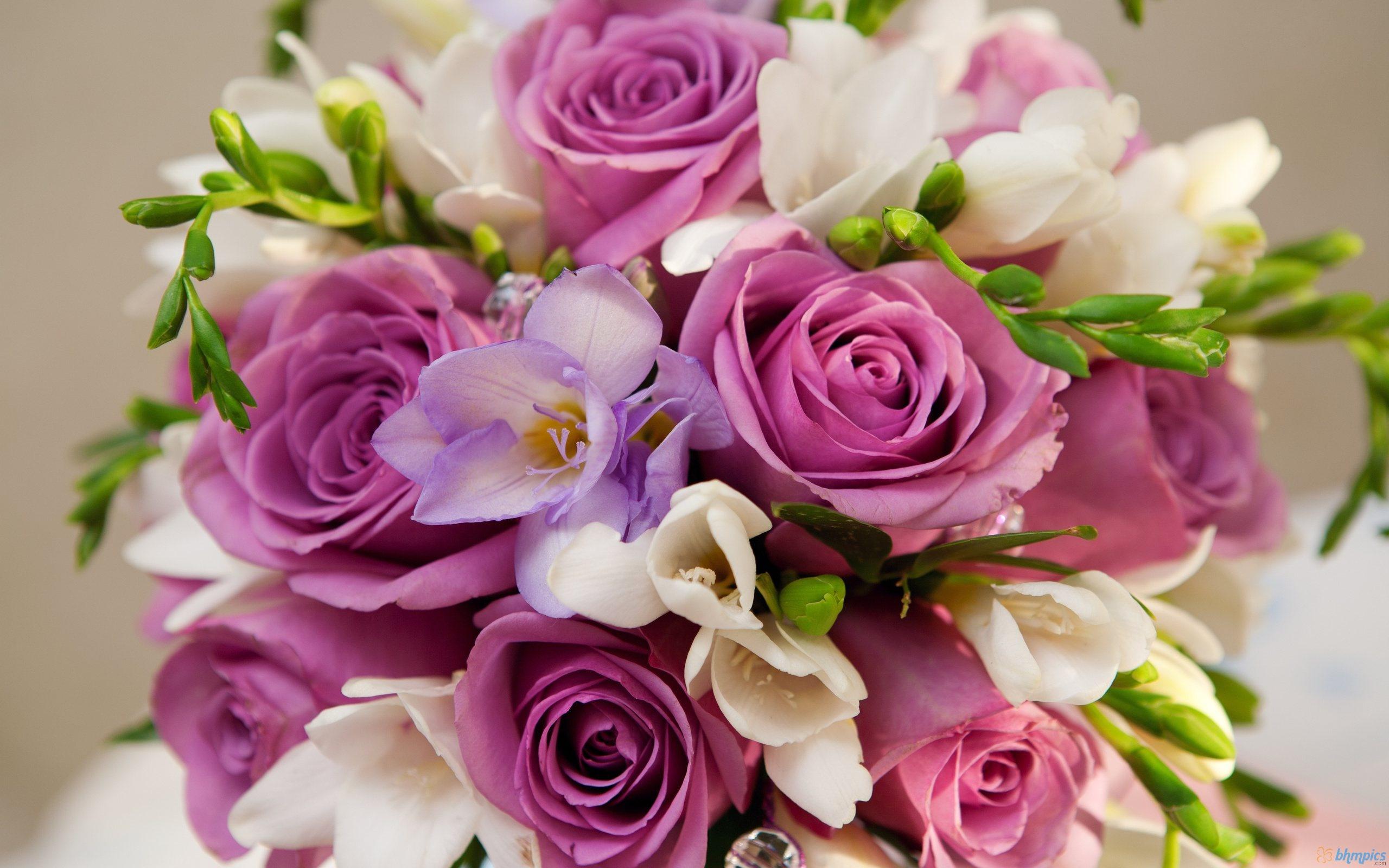 بالصور صور اجمل الورود , ورود برونق خاص 1020 10