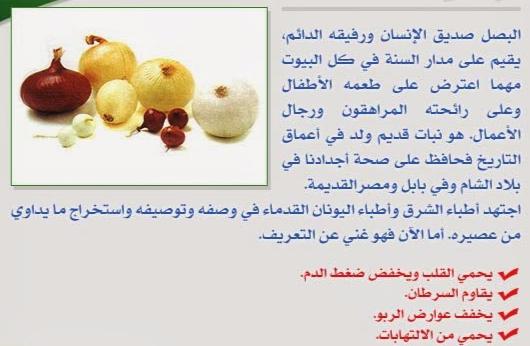بالصور فوائد البصل , اهمية تناول البصل 1163