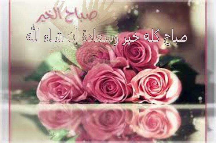 بالصور عبارات الصباح , صباح الخير بالصور 1255 4