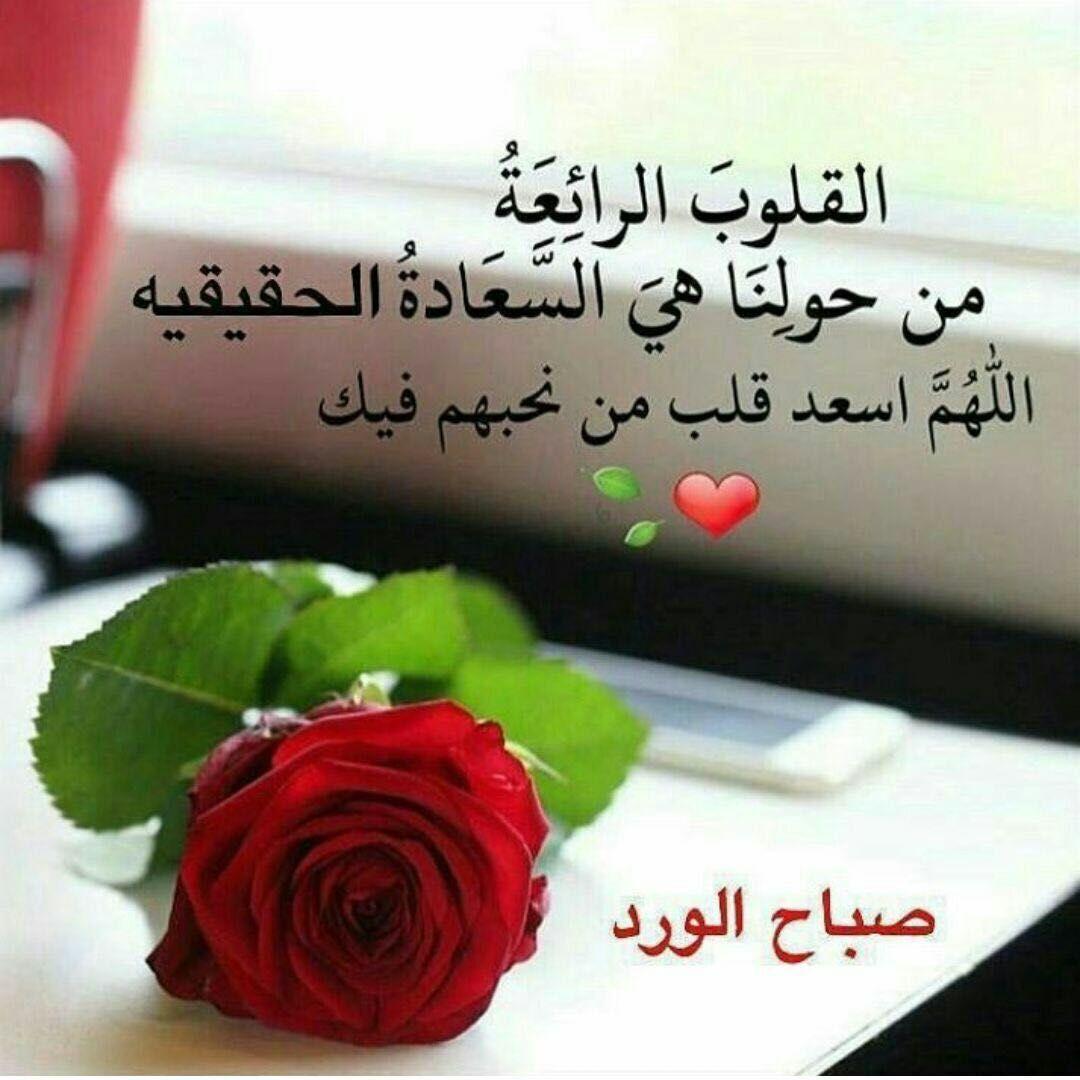 بالصور عبارات الصباح , صباح الخير بالصور 1255 7