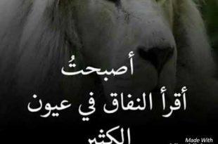 بالصور كلام عن الحزن , مشاعر حزينه مؤثره 1325 13 310x205