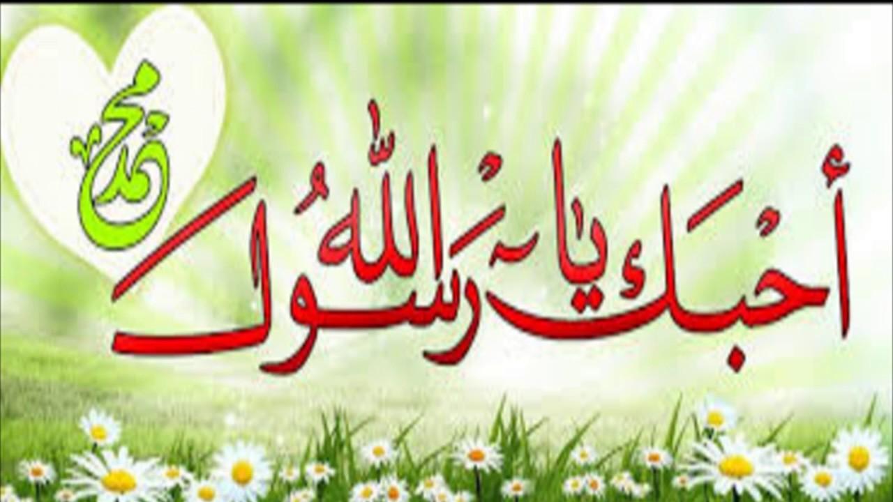 بالصور صور عن المولد النبوي الشريف , صور عن مولد اشرف الخلق 1352 2