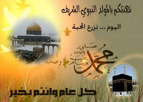 بالصور صور عن المولد النبوي الشريف , صور عن مولد اشرف الخلق 1352 6