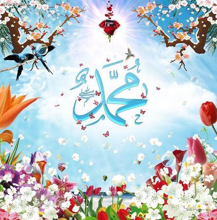 بالصور صور عن المولد النبوي الشريف , صور عن مولد اشرف الخلق 1352 8