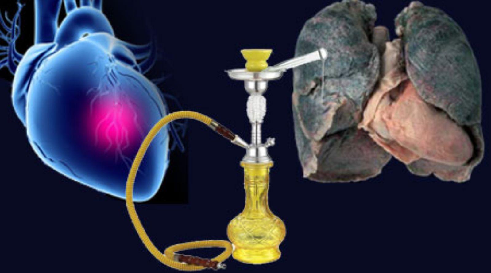 صور اضرار المعسل , تعرف على اخطار دخان المعسل