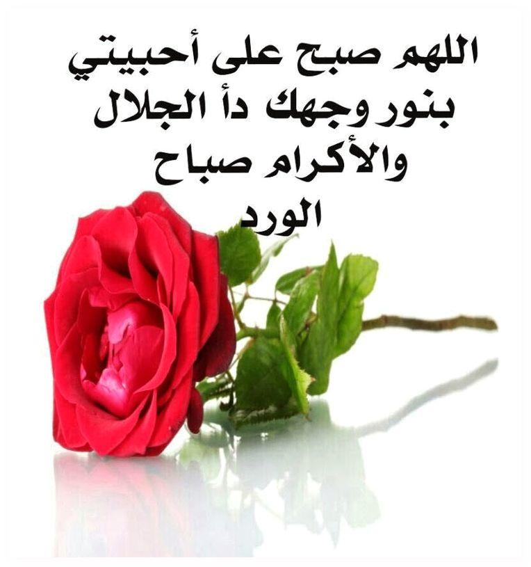 صورة صباح الخير حبيبي , اجمل صباح للحبيب