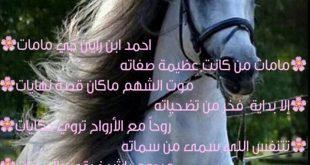 صوره قصيدة مدح في رجل شهم , قصيده مدح في رجل شهم مدهشه