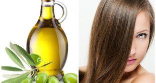 صوره زيت الزيتون للشعر , فوائد زيت الزيتون للشعر