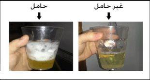 صوره تحليل الحمل بالملح , طريقة معرفة الحمل بتحليل الملح