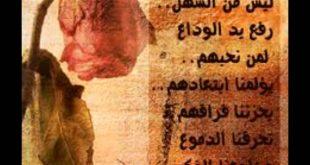 صوره كلمات وداع قصيره , شاهد اروع عبارات الواع القصيرة