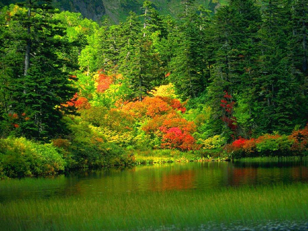 بالصور منظر جميل , شاهد بالصور اروع المناظر البراقة 3858 5