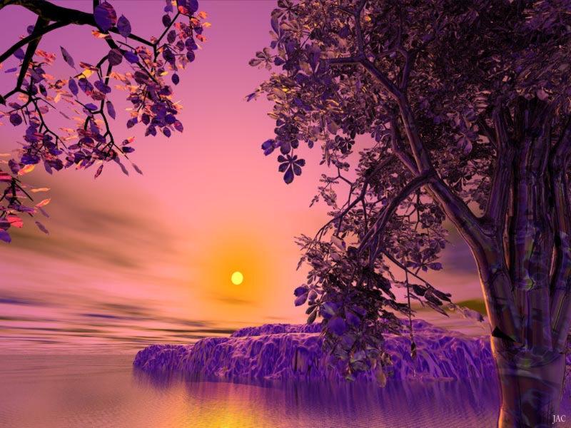 بالصور منظر جميل , شاهد بالصور اروع المناظر البراقة 3858 7