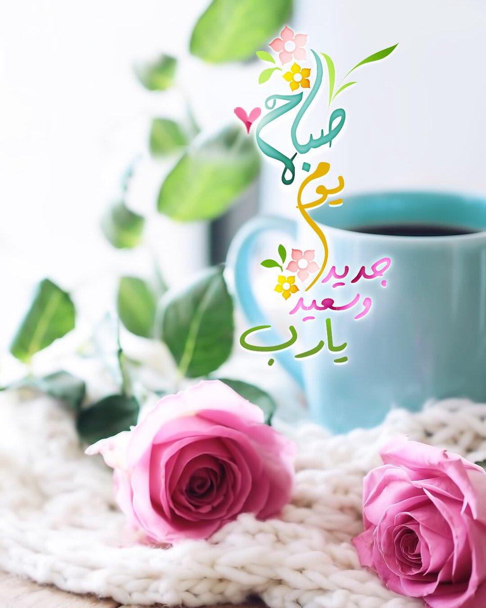 بالصور اجمل صباح الخير , اجمل العبارات الصباحية 3981 7
