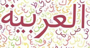 صورة كلمات عربية , كلمات خطوط عربية رائعه