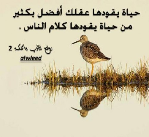 بالصور عبارات عن الحياة والناس , كلمات معبره عن الحياة والناس 4988 14