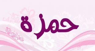 صوره معنى اسم حمزة , اروع المعاني لاسم حمزه