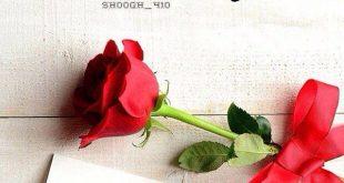 بالصور رسالة صباحية للحبيب , اجمل الرسائل الصباحيه لحبيبي 1640 10 310x165