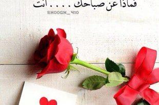 بالصور رسالة صباحية للحبيب , اجمل الرسائل الصباحيه لحبيبي 1640 10 310x205