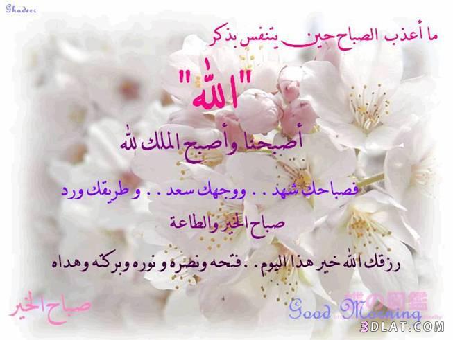 صورة ادعية الصباح بالصور , ابدا يومك بذكر الله 1667 2