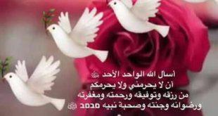 بالصور ادعية الصباح بالصور , ابدا يومك بذكر الله 1667 9 310x165
