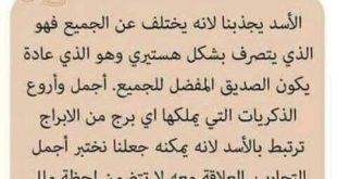 بالصور حظك اليوم برج الاسد , كذب المجمون و لو صدقوا او صدفوا 1815 3 310x165