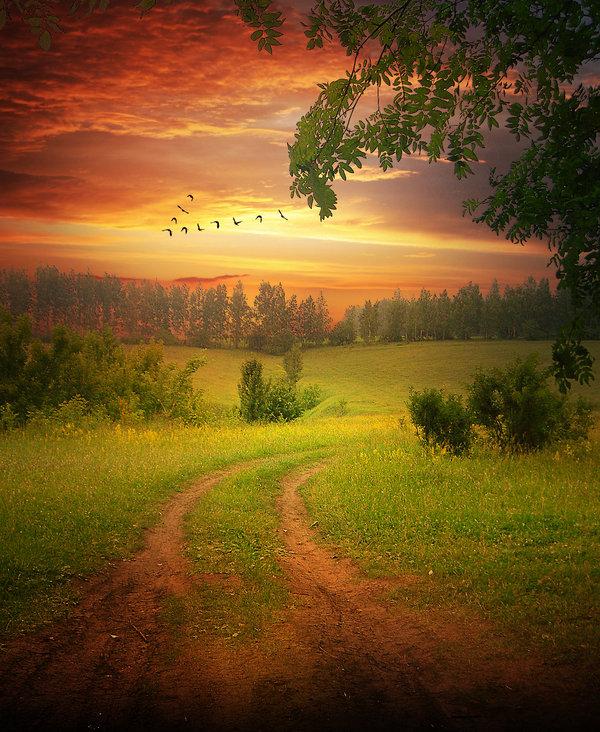 صورة صور مناظر جميله , جمال الطبيعة فى صورة