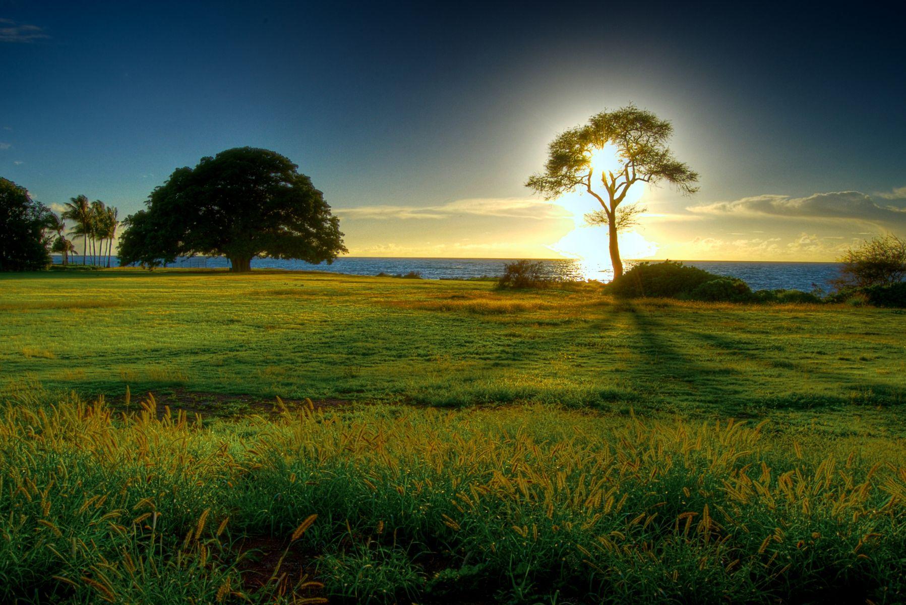 بالصور صور مناظر جميله , جمال الطبيعة فى صورة 2564 14