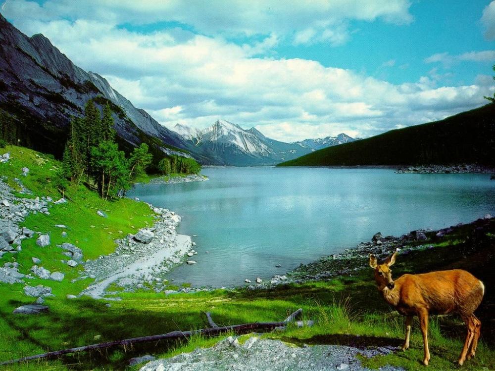 بالصور صور مناظر جميله , جمال الطبيعة فى صورة 2564 15
