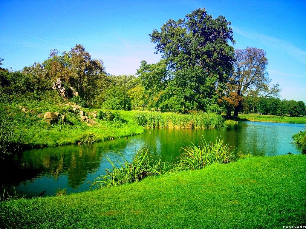 بالصور صور مناظر جميله , جمال الطبيعة فى صورة 2564 17