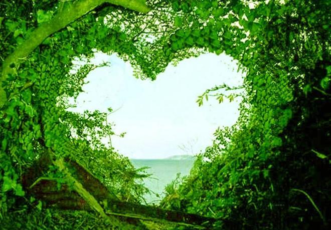 بالصور صور مناظر جميله , جمال الطبيعة فى صورة 2564 25
