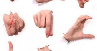 صورة لغة الجسد , تعلم الاشارات واللغات الجسديه