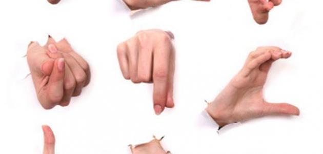 بالصور لغة الجسد , تعلم الاشارات واللغات الجسديه 2572