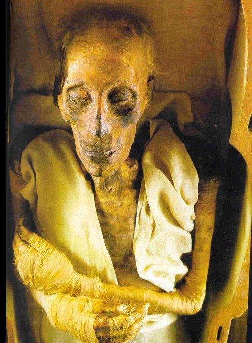 صور ما معنى فرعون , ما المقصود باسم فرعون وما صفاتة ؟